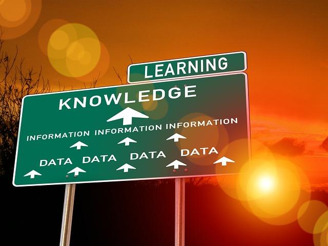 SAPのノウハウを手に入れる2つの方法