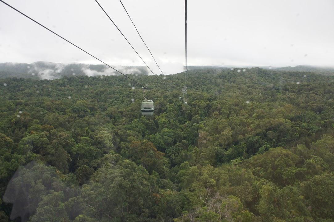 世界最古の熱帯雨林を堪能できるスカイレールでキュランダ村へ