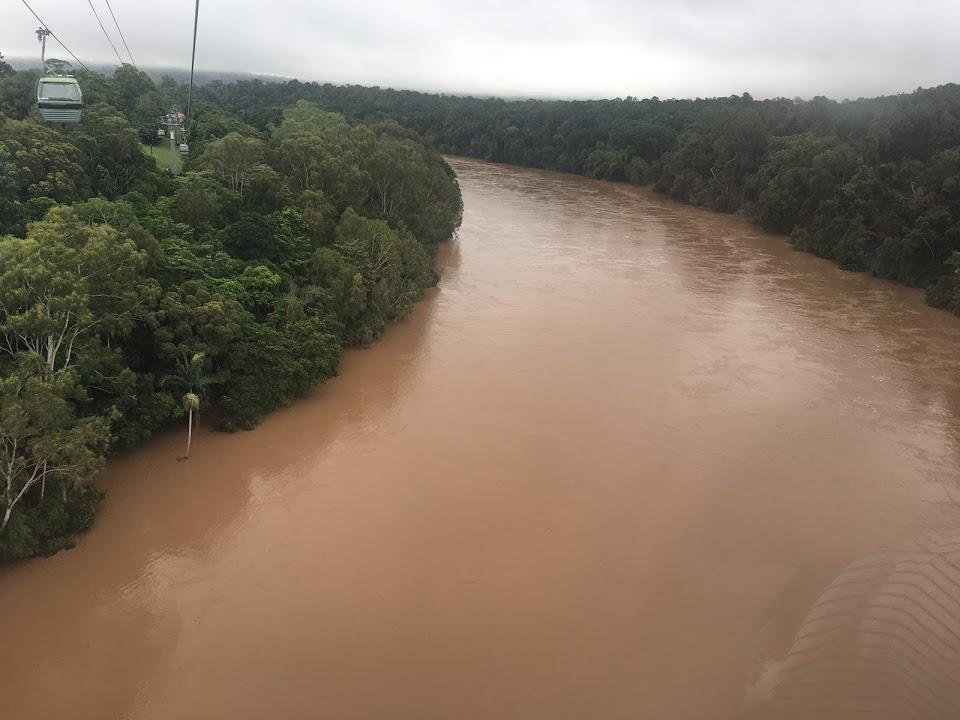 雨がやんでたので川の写真